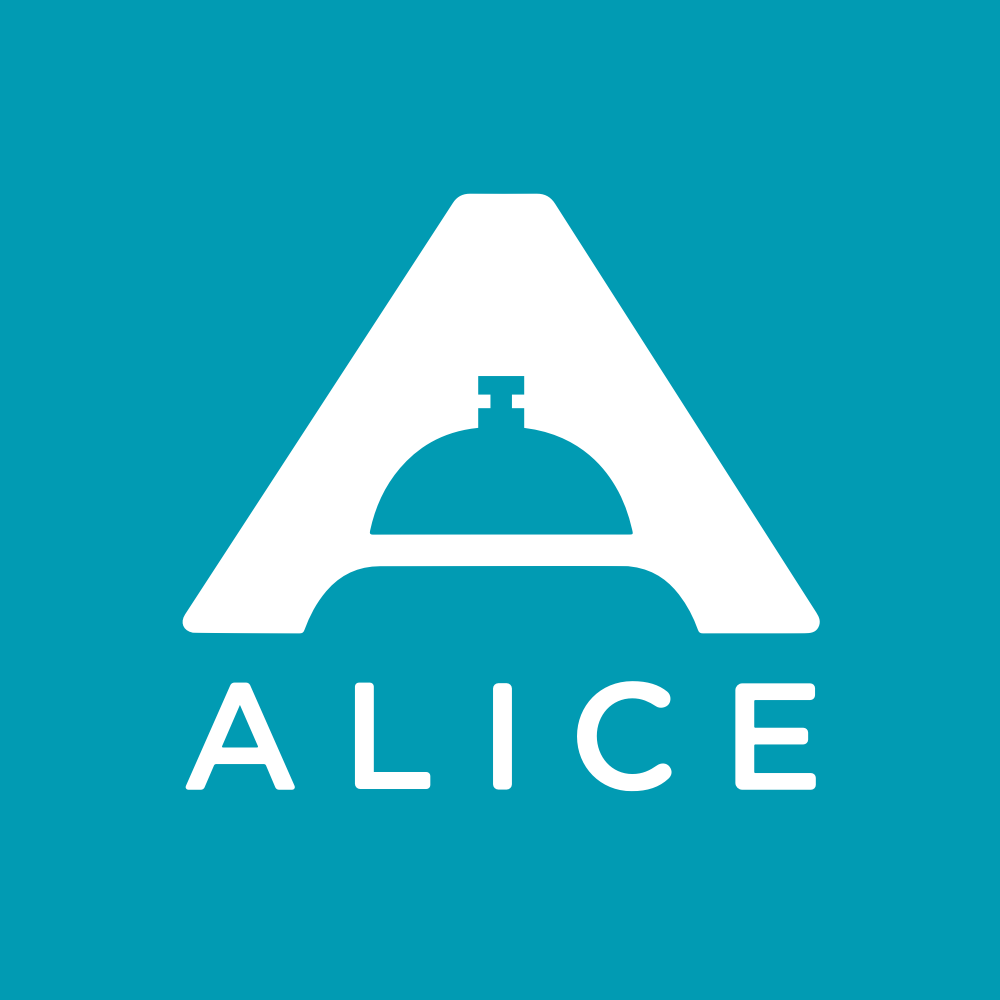 ALICE Housekeeping